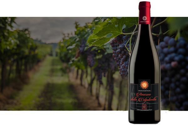 wine-baners-3
